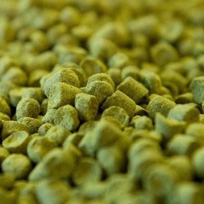 Fuggle pellet T90